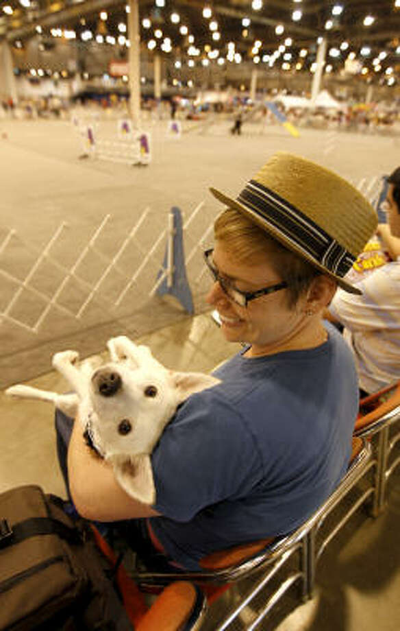 Veronica Triplett had her eyes on Saturday's agility competition. Sam, however, seemed more easily distracted. Photo: Karen Warren, Chronicle