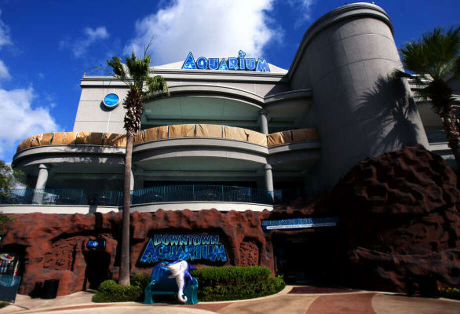 The Downtown Aquarium has never met the revenue threshold to pay percentage rent under its lease. Photo: Cody Duty, Houston Chronicle