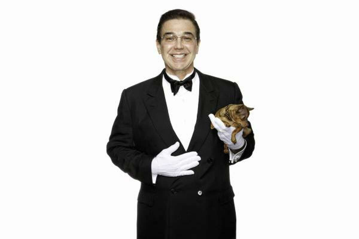 Professional butler, Edward Ordonez with his teacup Chihuahua.