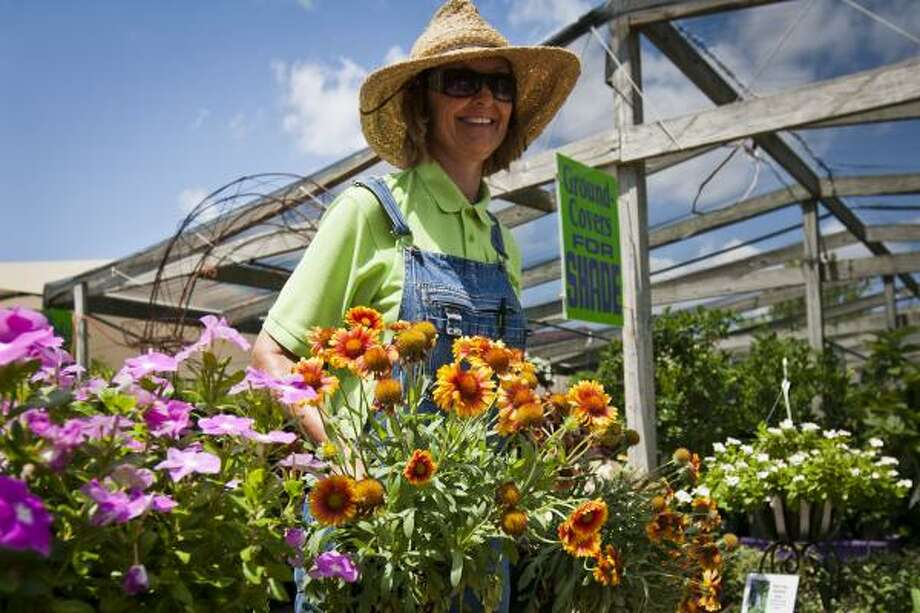 Beverly Welch, owner of The Arbor Gate garden center in Tomball, carries pots of gaillardia, or Indian blanket, to a customer's cart Friday. Sales of heat-tolerant flowers are especially strong now. Photo: Patrick T. Fallon:, Chronicle