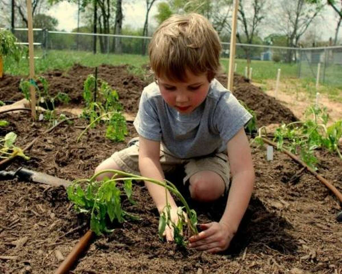 As part of a slow church strategy, Jimmy Tollett and others at the Calvary Episcopal Baptist Church in Richmond work in an eco-friendly community garden.