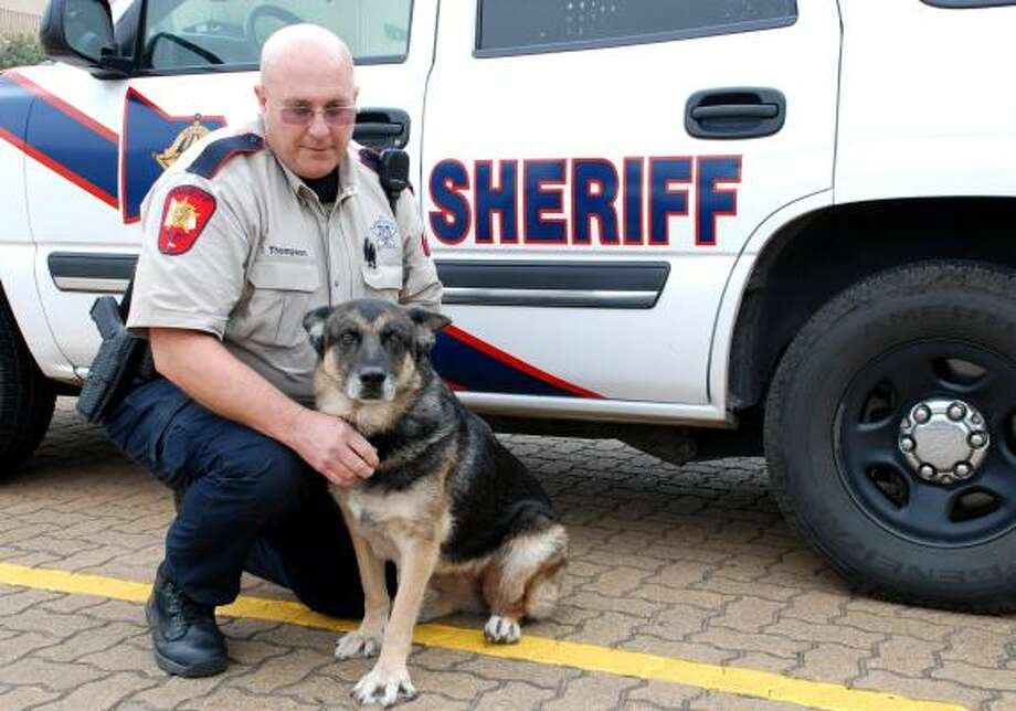 LINDSAY PEYTON: FOR THE CHRONICLE ON DUTY: Montgomery County Sheriff's Office Deputy Tom Thompson says Bianca is the best partner a deputy could have. They have worked together as a K-9 narcotics unit at the MCSO for the past five years. Photo: Lindsay Peyton