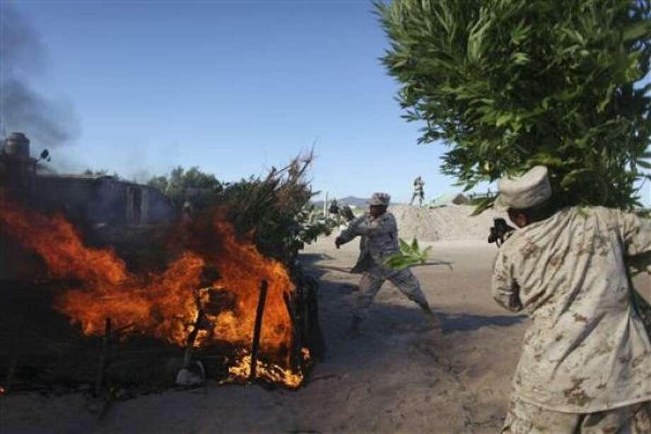 Personal del Ejército mexicano quema plantas de marihuana tras descubrir un cultivo cerca de San Quintín, en el estado mexicano de Baja California. Photo: Alexandre Meneghini, AP
