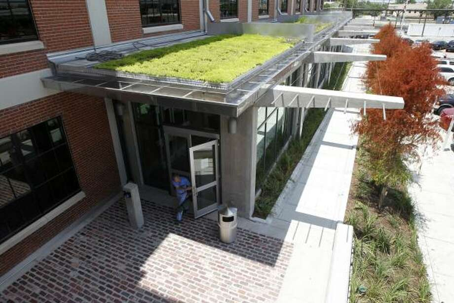 A patch of vegetated roof at the Green Building Center is watered with condensation from the A/C system. Photo: James Nielsen, Houston Chronicle