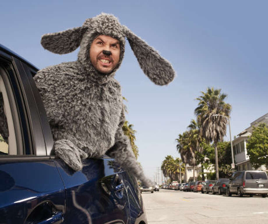 Jason Gann played the original naughty pooch in the Australian version of Wilfred. He reprises the rol in FX's series. Photo: Frank Ockenfels, FX