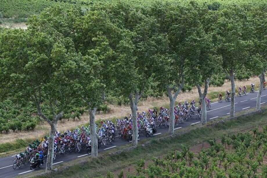 The peloton during stage 15 of the Tour de France, from Limoux to Montpellier. Photo: Michael Steele, Getty