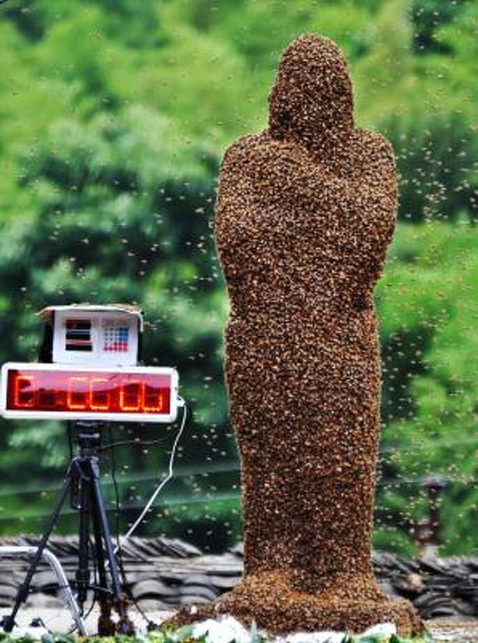 42-year-old beekeeper Wang Dalin is covered with bees during a contest against 20-year-old Lu Kongjiang, also a beekeeper, in Longhui County of Shaoyang City, central China's Hunan Province. Wang finally won in the hour-long duel since 26 kilograms (57 pounds) of bees covered his body Photo: Lu Jianshe, Associated Press