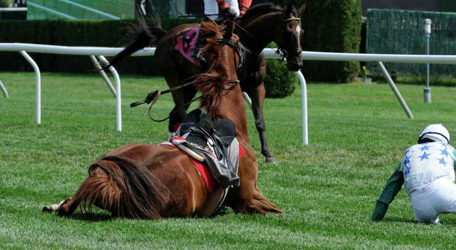 Baltic Shore and jockey William McCarthy are seperated after a fall on  the final fence of The National Steeplechase Association J.P. Morgan Hurdle at the Saratoga Race Course in Saratoga Springs, N.Y. Aug. 18, 2011.    (Skip Dickstein / Times Union) Photo: SKIP DICKSTEIN