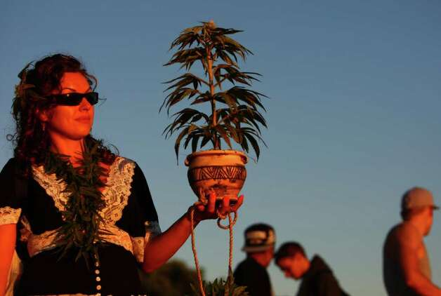 Katrina Brusatto carries a plastic pot plant during the first day of Seattle's Hempfest 2011, a gathering of thousands of people at Myrtle Edwards Park on Friday, August 19, 2011. The pro-pot festival is billed as the largest in the country and on Saturday will feature the Seattle mayor and U.S. Rep. Dennis Kucinich. This was the first year the festival spanned three days. Photo: JOSHUA TRUJILLO / SEATTLEPI.COM