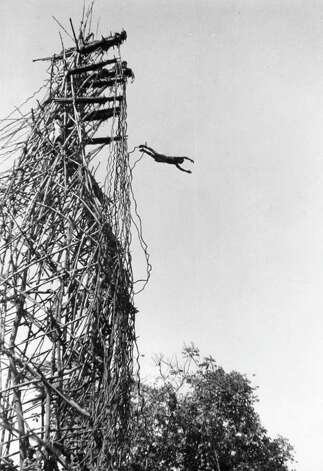 Dick Blair, of Riverside, took this photo of a New Hebrides land diver (bungee jumper) plunging 78 feet to the earth with nothing to hold him but a jungle vine. Photo: Contributed Photo