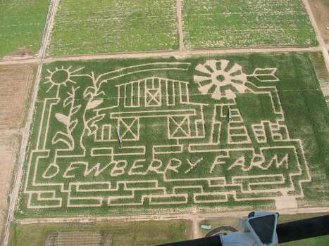 Aerial view of the maze at Dewberry Farm, 7705 FM 362 in katy, TX. / Handout email
