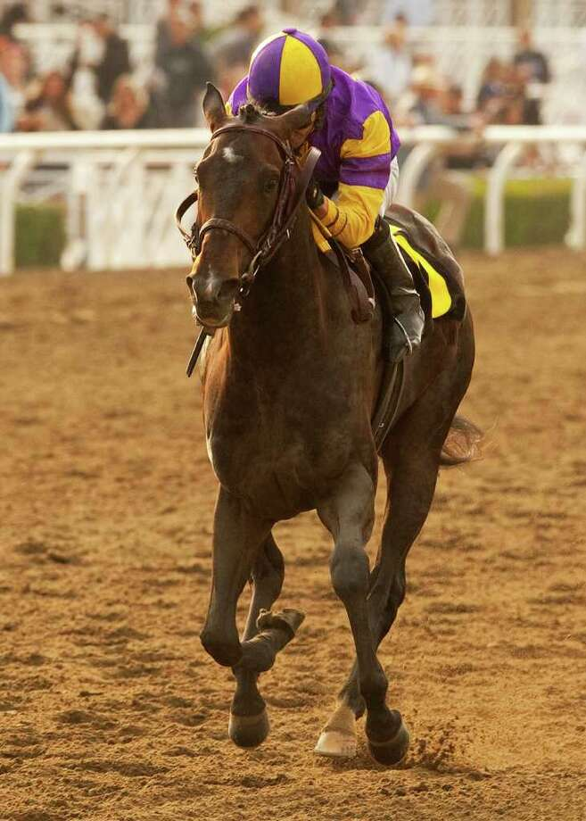 Premier Pegasus showed enough stuff to win the Kentucky Derby before an injury plucked the colt from training.  Photo: AP / BENOIT PHOTO