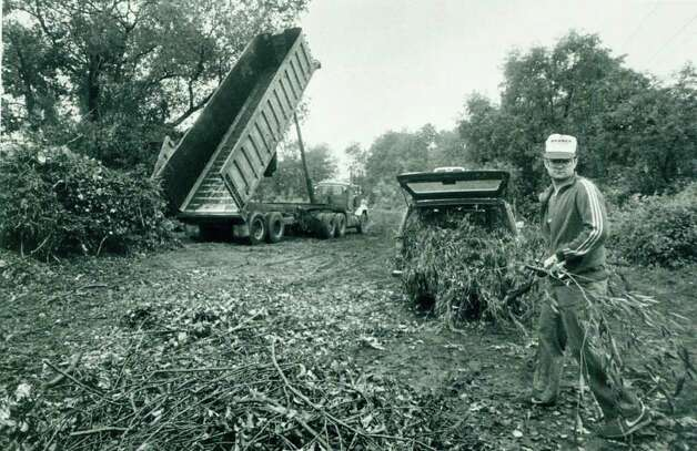 Hurricane Gloria  Oct. 5, 1985 - Jon Saunders unloads for the 4th time. Saunders, a Westport resident used his Volvo station wagon to transport the brush left on his yard from Hurricane Gloria. In the background is a dump truck the city was using to haul brush to Sherwood Island. Glenn Osmundson Photo: File Photo, ST / Stamford Advocate File Photo