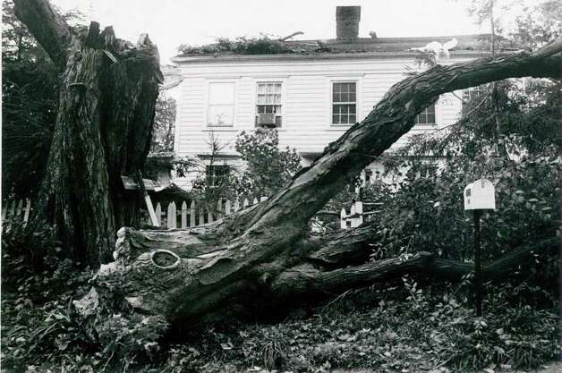 Hurricane Gloria  Sept. 27, 1985 - The Didisheim residence, a 200 year old home, was damaged when a large old tree in their front yard fell onto the house. Theodora Litsios Photo: File Photo, ST / Stamford Advocate File Photo