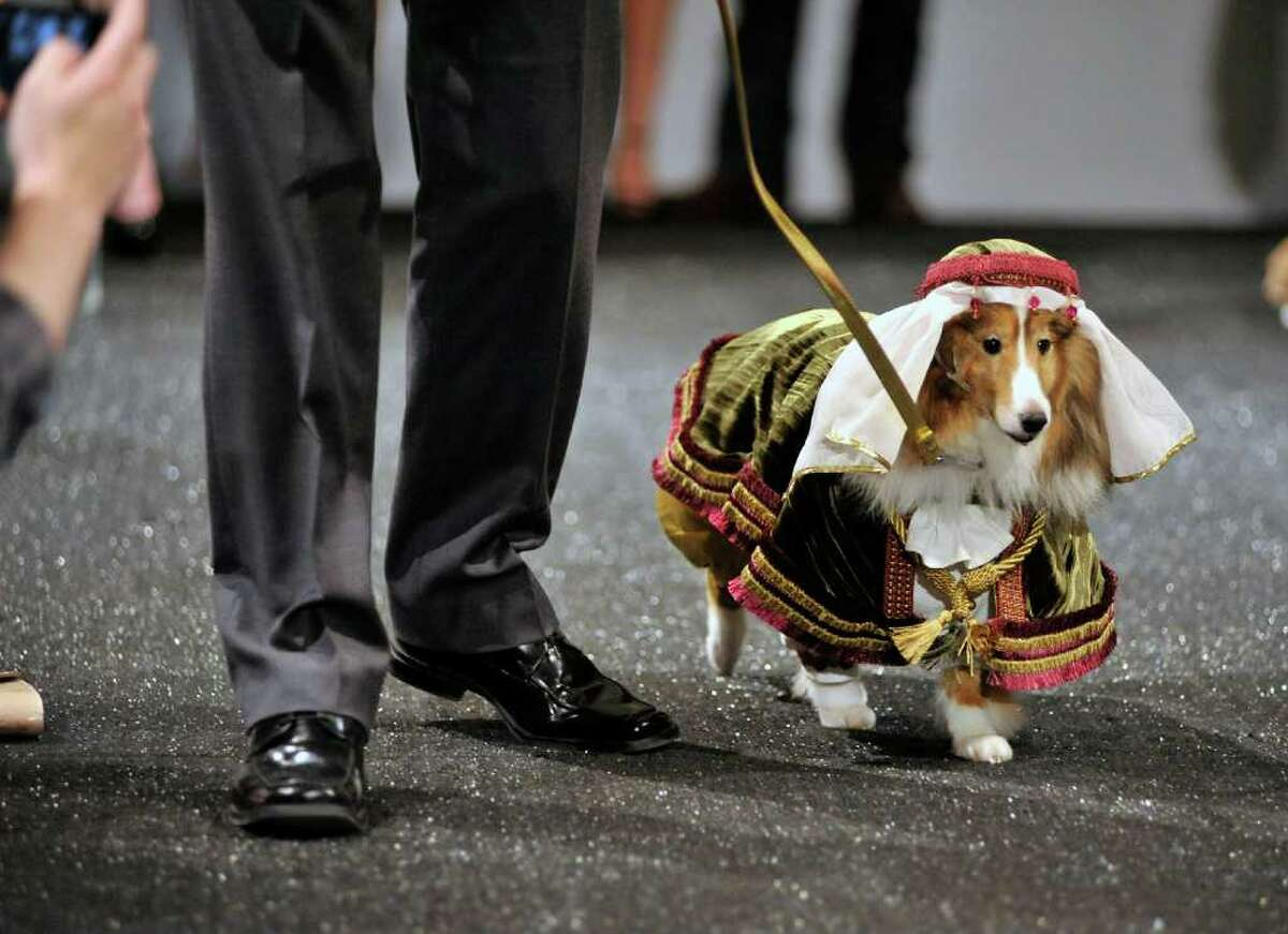 Offbeat photos of the week (1/6/12)