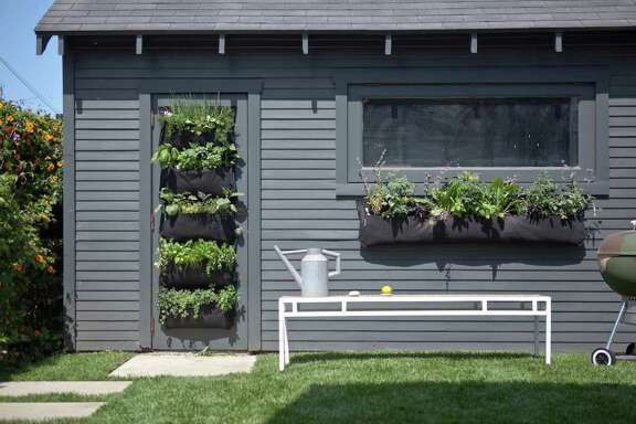 Herbs planted in Woolly Pockets take to life on a garden shed wall in vertical and horizontal displays.