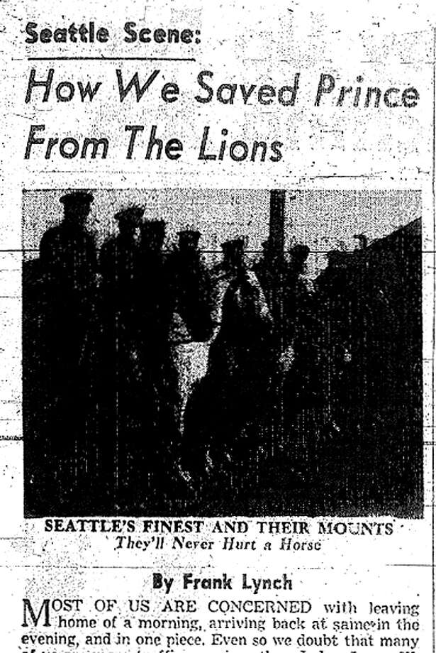 Prince: The retired Seattle police horse was nearly lion food in the 1926, when he was taken to Woodland Park Zoo to be slaughtered. Prince was saved by public outcry, as were other horses slated to be slaughtered. Photo: Seattlepi.com File