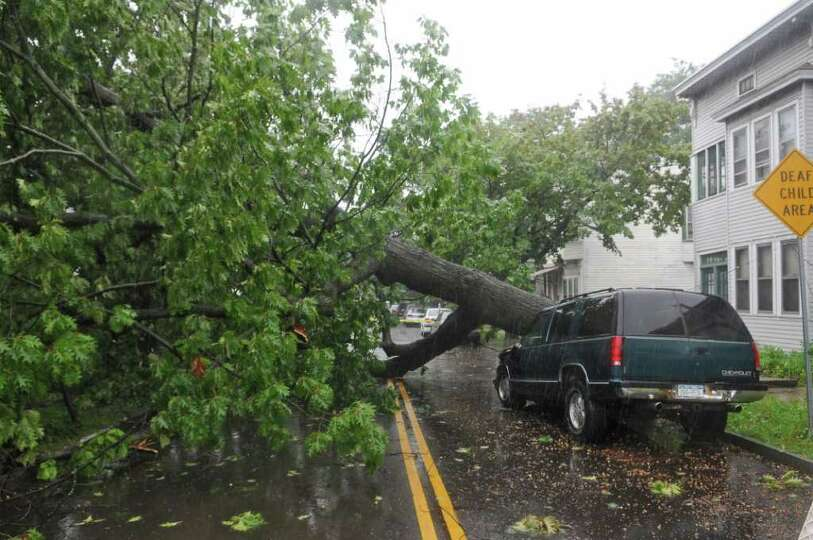 A tree fell across a truck owned by James Terrell on Mereline Avenue as a result of Hurricane Irene