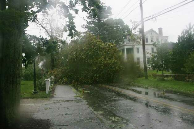 A tree blocks Gulf St. in Milford as hurricane Irene hits Milford on Sunday August 28, 2011. Photo: B.K. Angeletti / Connecticut Post
