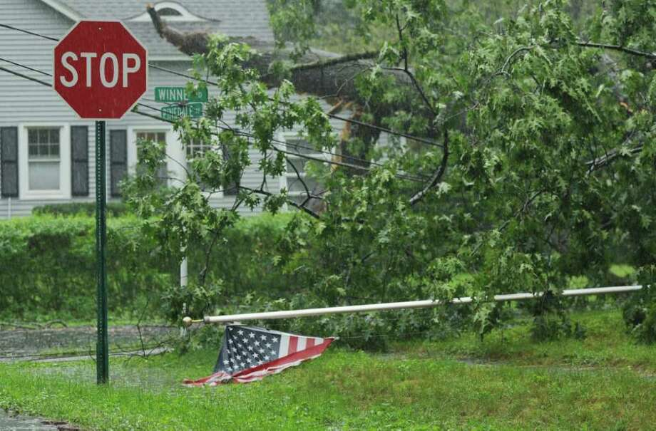 A large oak tree fell across Winnie Road, taking out utility lines in Delmar N.Y. Sunday morning Aug. 28, 2011. Hurricane Irene entered the Capital Region Sunday morning downing trees throughout Delmar, many are without power. (Will Waldron / Times Union) Photo: Will Waldron
