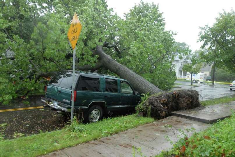 Mereline Avenue in Albany is blocked by a fallen tree Sunday Aug. 28, 2011. Hurricane Irene entered