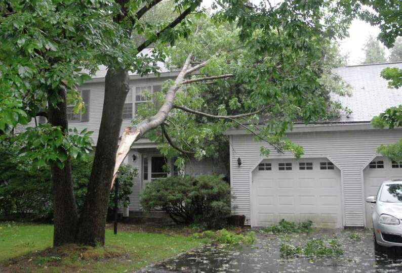 Scenes of fallen branches were an all-too-common site in Delmar, N.Y., Sunday, Aug. 28, 2011. Tropic