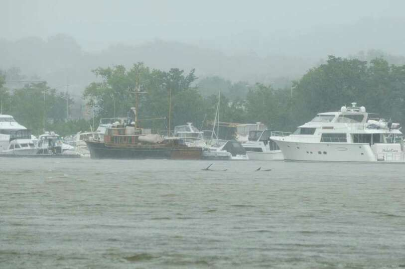 Debris floats past boats moored at the Albany Yacht Club in Rensselaer N.Y., Sunday noontime Aug. 28