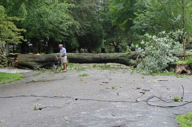A man on a bicycle goes around a tree that fallen over Meadow Road in Riverside during Hurricane Irene on Sunday, Aug. 28. 2011. Photo: Helen Neafsey / Greenwich Time
