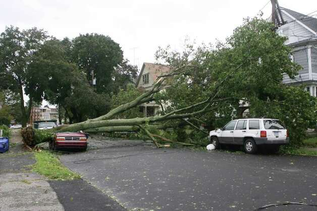 A tree crushes a car on Ellsworth St. during hurricane Irene in Bridgeport on Sunday August 28, 2011. Photo: B.K. Angeletti / Connecticut Post