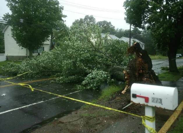 A tree knocked over by Hurricane Irene completely blocks North Street in Milford on Sunday, August 28, 2011. Photo: Brian A. Pounds / Connecticut Post
