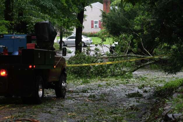 Trees were down across the region after Hurricane Irene came through Sunday. Photo: Jeff Bustraan / Connecticut Post