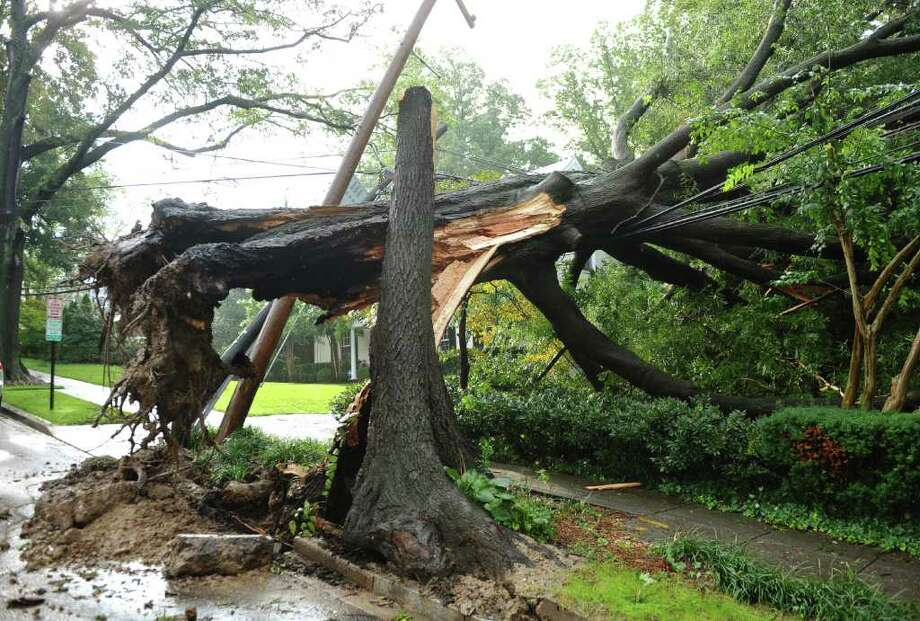 A fallen tree which also knocked over a power line is seen on Loughboro Road after Hurricane Irene swept through the area, August 28, 2011 in Washington, DC. Hundreds of thousands in the Capital region have been left without power in the wake of Hurricane Irene. AFP PHOTO/Mandel NGAN Photo: MANDEL NGAN, AFP/Getty Images / 2011 AFP