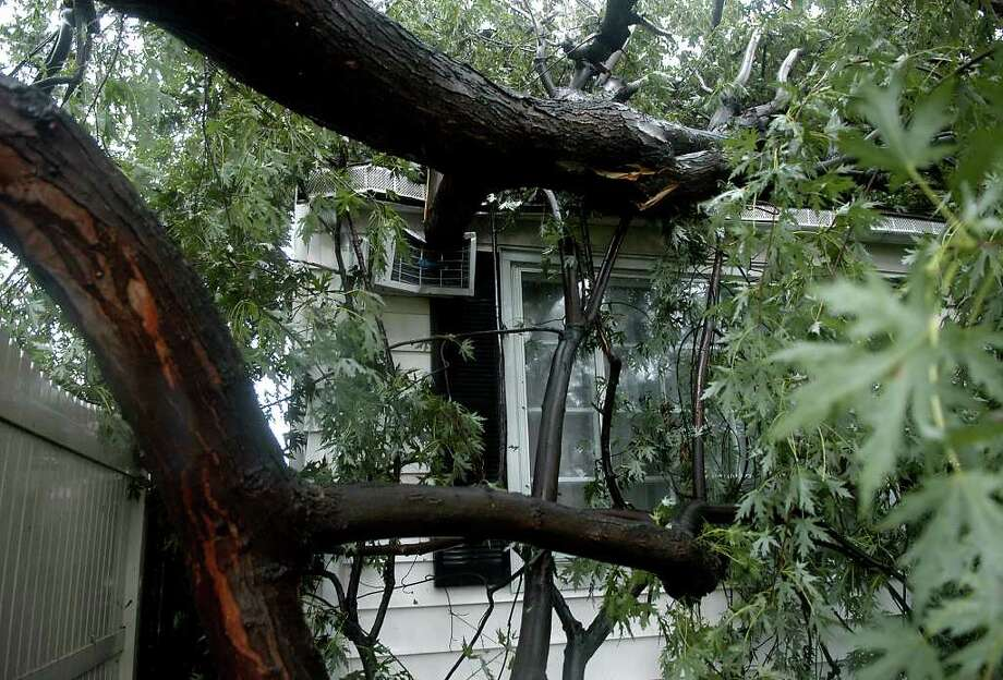 A large tree that fell into Lisa Kostick's house as a result of Hurricane Irene is seen in Exeter, Pa. caused major damage on Sunday, Aug. 28, 2011. (AP Photo/Ralph Francello)  MANDATORY CREDIT Photo: AP