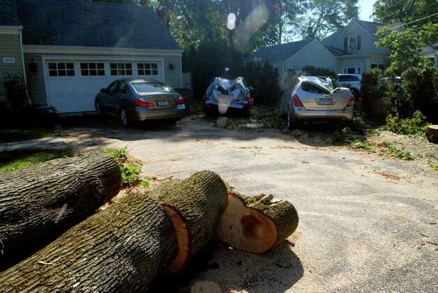 Two cars were destroyed by a falling tree at the Shippan Ave home of Janine McCormick and David Cingari in Stamford, Conn. after tropical storm Irene, photgraphed the day after the storm on Monday August 29, 2011. Photo: Dru Nadler / Stamford Advocate Freelance
