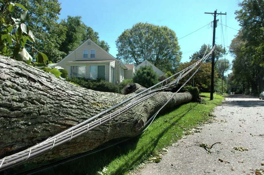 Wires and a large tree were still down on Burroughs Road in Fairfield, Conn. on Monday Aug. 29, 2011. Photo: Cathy Zuraw / Connecticut Post