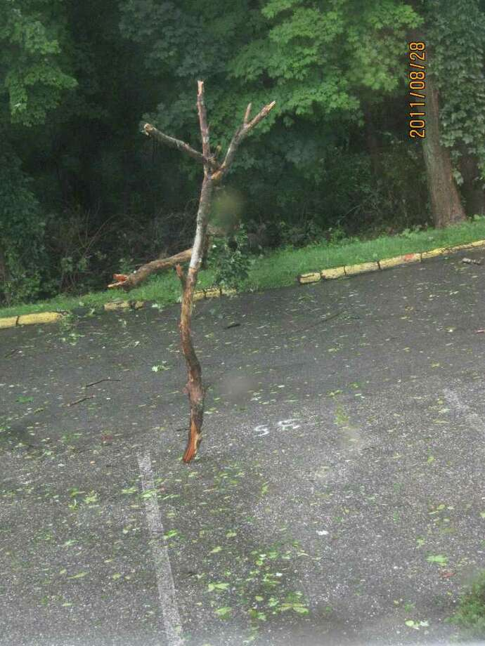"User-submitted photo of damage from Hurricane Irene.  Submitted by CathieV ""Standing outside my Condo window in the middle of the road when i woke up.all else is fine.But its SPOOKY"" Photo: Contributed"