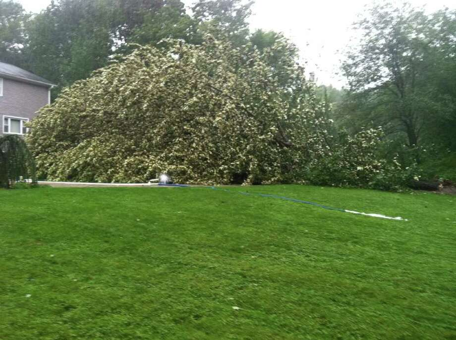 "User-submitted photo of damage from Hurricane Irene.  Submitted by Mike ""Irene uprooted a large tree in my backyard in Danbury."" Photo: Contributed"