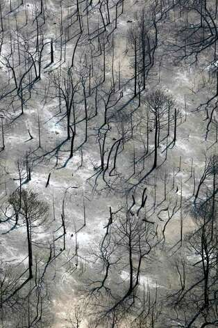 Fire damage is seen Tuesday Sept. 6, 2011 in this aerial image over the wildfires in the Bastrop, Texas. Photo: WILLIAM LUTHER, William Luther/wluther@express-news.net / 2011 SAN ANTONIO EXPRESS-NEWS
