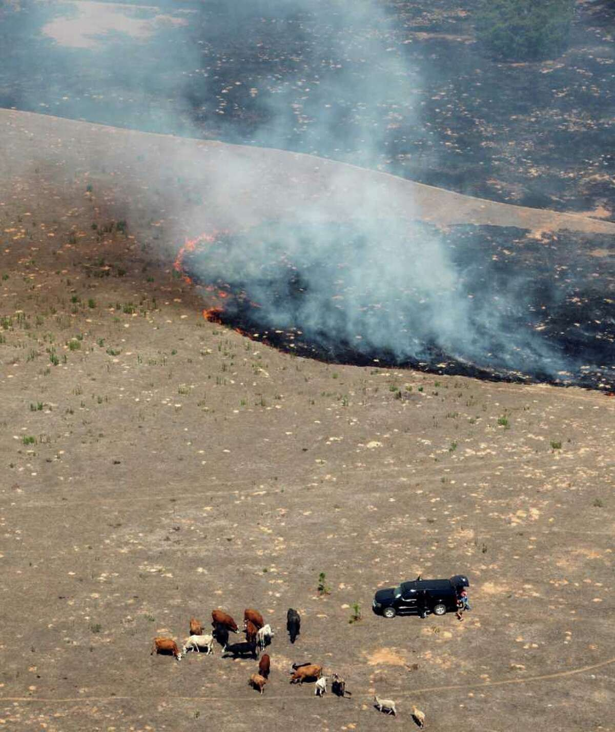 A group of people attend Tuesday Sept. 6, 2011 in this aerial image over the wildfires in the Bastrop, Texas to cattle as a portion of the fire burns in the background. (William Luther/wluther@express-news.net)