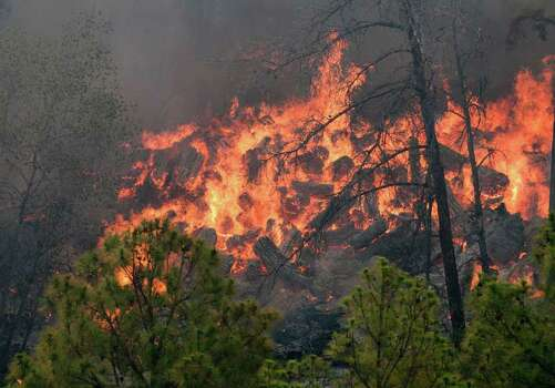 This photo provided by Texas Parks and Wildlife shows a fire burning in Bastrop State Park in Bastrop, Texas. More than 1,000 homes have been destroyed in at least 57 wildfires across rain-starved Texas, most of them in one devastating blaze near Austin that is still raging out of control, officials said Tuesday. Photo: AP