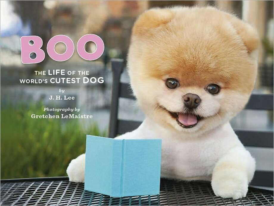 GRETCHEN LeMAISTRE Boo: The Life of the World's Cutest Dog, by J.H. Lee Photo: Chronicle Books