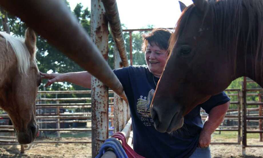 "Elizabeth Ledesma feeds her two horses, Big'un and D'Argo, at the free refuge at the Waller County Fairgrounds. ""They're like my kids,"" she says. Photo: Mayra Beltran / © 2011 Houston Chronicle"