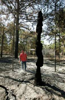 Alvin Becker surveys a burned tree trunk upon returning to their home in Circle D Estates after the wildfires near Bastrop, Texas, Monday September 12, 2011. Their home and three others next to it were the only one still standing Monday, thanks to the efforts of their neighbor Randy Stack who stayed behind and used garden hoses to keep the flames down all week. Officials are saying approximately 1,500 homes have been destroyed making this the worst wildfire disaster in Texas history.  (Erich Schlegel/Special Contributor) Photo: Erich Schlegel, Houston Chronicle / ©2011 Erich Schlegel