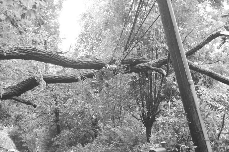 "Many people in Greewnich lost power thanks to the effects of Tropical Storm Irene.  L. Scott Frantz, State Senator - 36th District, is looking into what he calls the ""significant deficiencies in the service recovery plans of our utilities."" Here, limbs of a tree fell on Spring Road in Riverside during Hurricane Irene knocking down wires. Photo: Helen Neafsey / Greenwich Time"