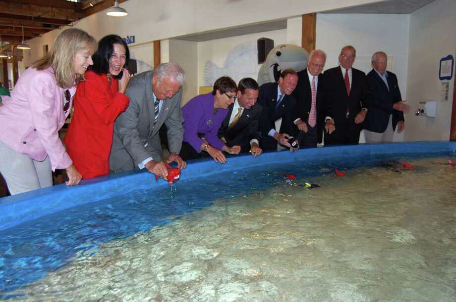 Local dignitaries release toy sharks into the Ray Touch Pool at a groundbreaking ceremony at the Maritime Aquarium in Norwalk on Monday. The event marked the beginning of a $4 million dollar project at the aquarium that will bring new exhibits to the space, including a large Shark & Ray Touch Pool, and the creation of a Long Island Sound visitor orientation space. Photo: Jordan Osterhout