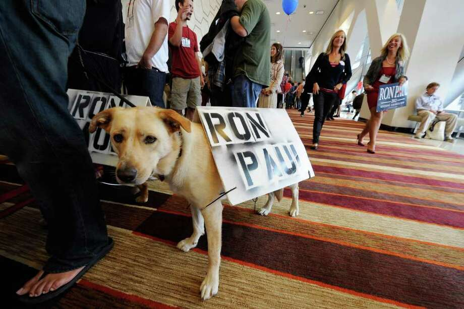 It can't vote, but a dog named Keelut shows support for Ron Paul at the California Republican Party Convention in Los Angeles on Saturday. Photo: Kevork Djansezian, Getty / 2011 Getty Images