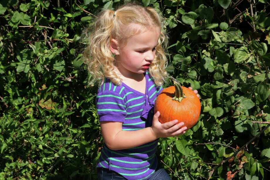 Oct. 5: The Little Red Schoolhouse in New Fairfield will host its annual Pumpkin Festival at the schoolhouse on Brush Hill Road from 9 a.m. to 3 p.m. Rain date is Oct. 12. Photo: B.K. Angeletti / Connecticut Post