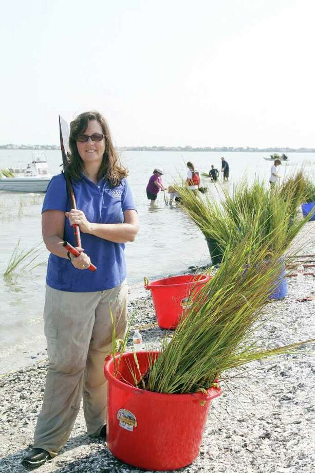 PIN LIM: FOR THE CHRONICLE ON THE JOB: Sharon Roark took part in the Marsh Grass Planting event earlier in the summer. Photo: Pin Lim / Copyright Pin Lim.