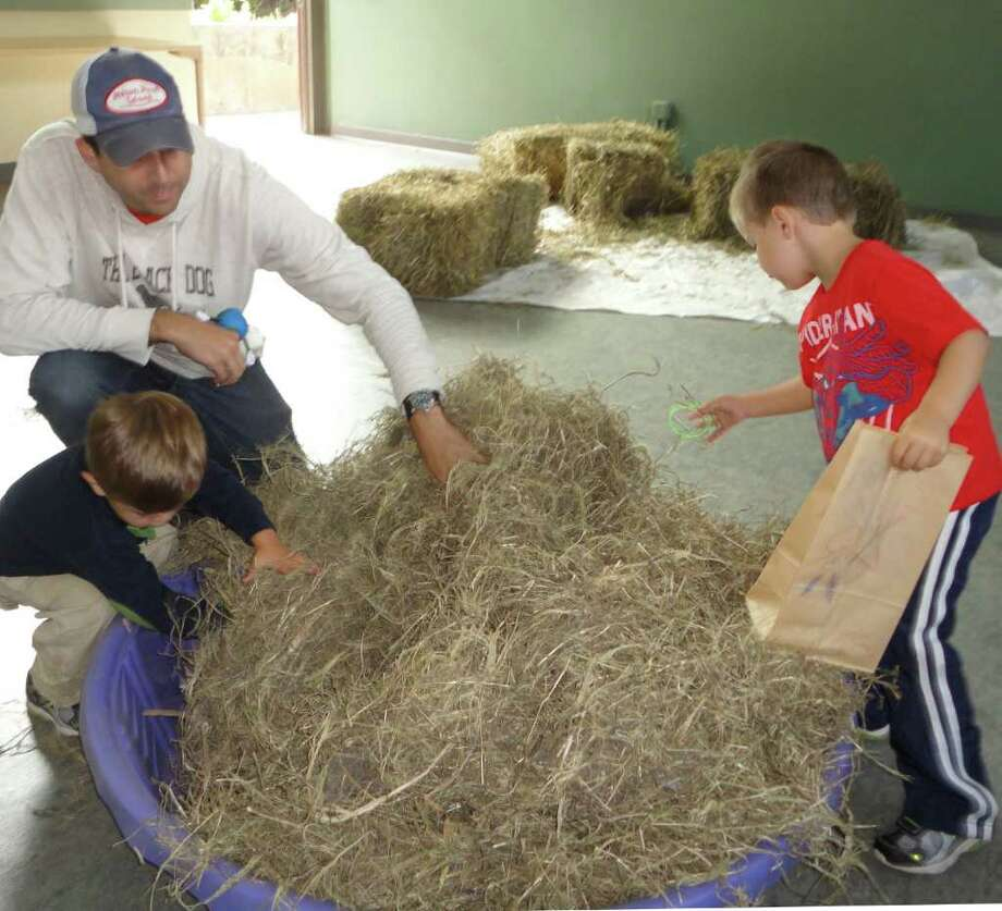 Ryan Allen, left, of Westport, and his brother Brendan, 3, searched Saturday for nature-related trinkets in a pile of hay at Earthplace, with help from their father Josh Allen. Photo: Meg Barone / Westport News freelance