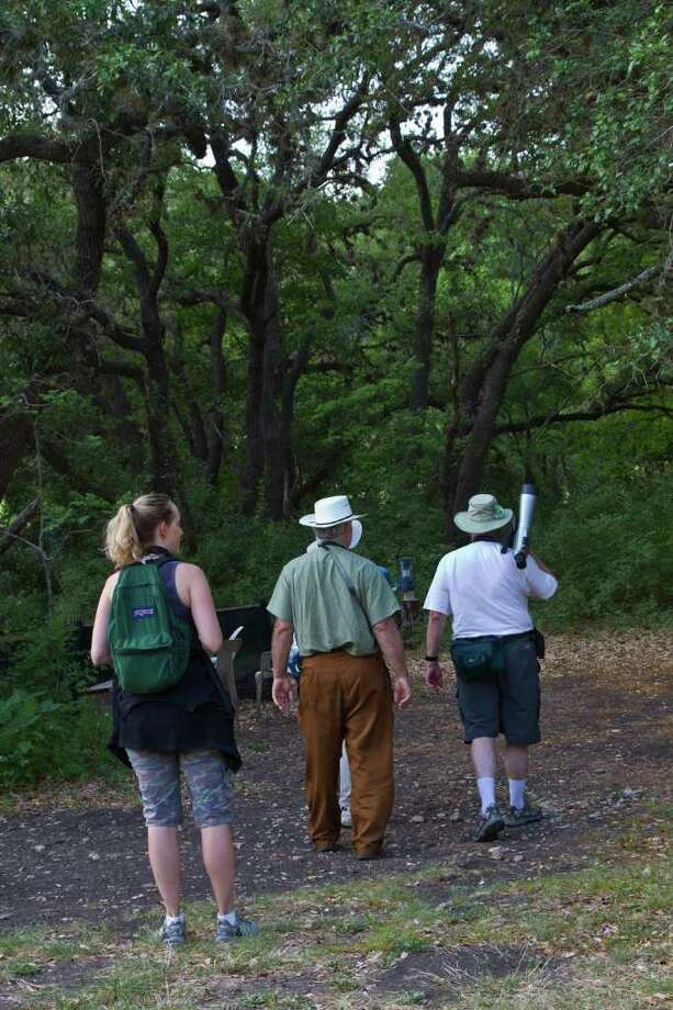 Guadalupe County Warbler Woods A Sanctuary For Birds